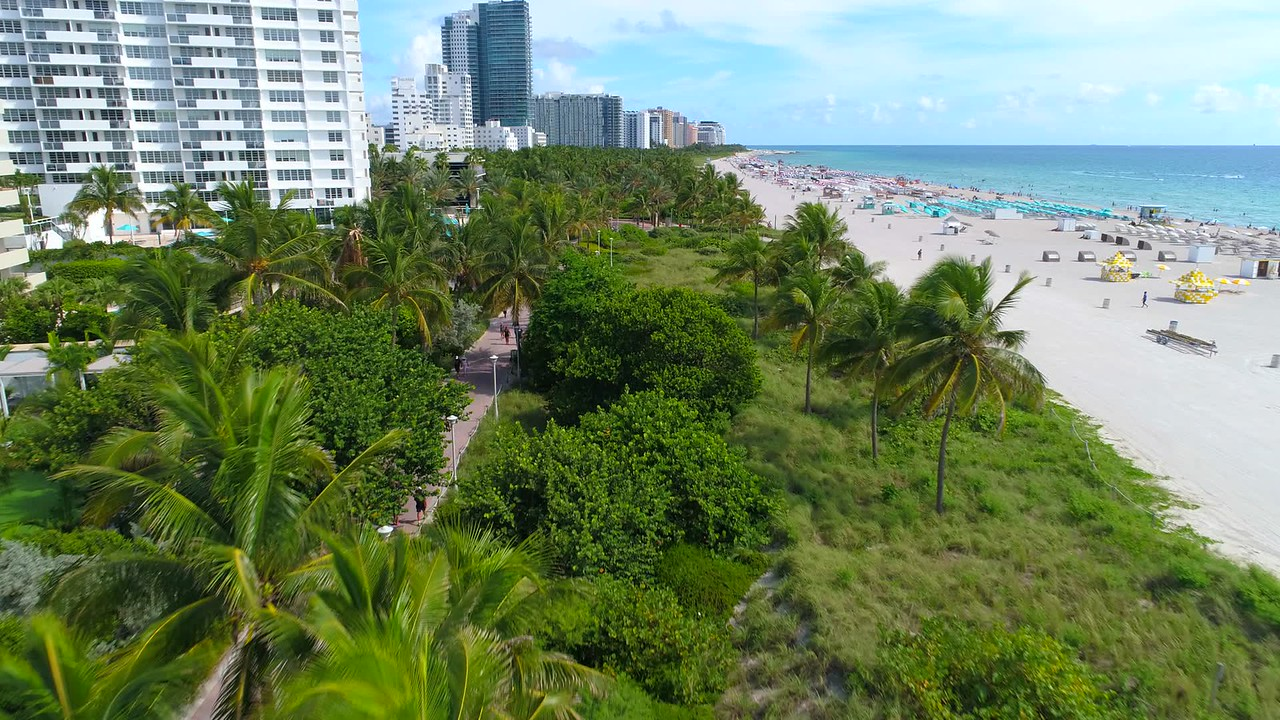 South Beach Miami Oceanwalk tropical beach scene