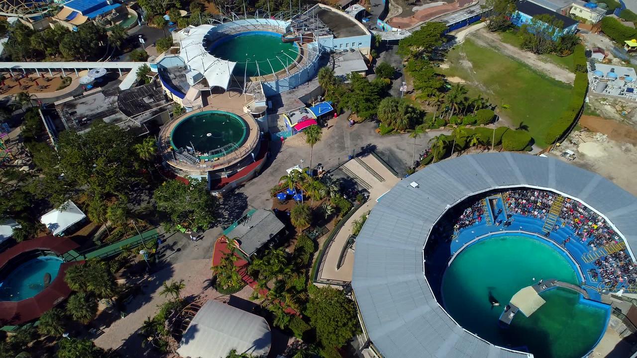Miami Seaquarium  show aerial drone shot 4k