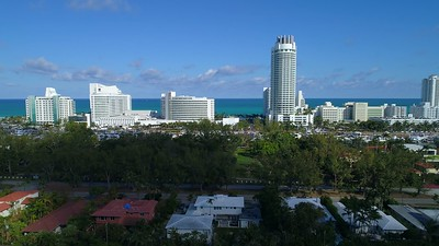 Miami Beach Pinetree Park 4k