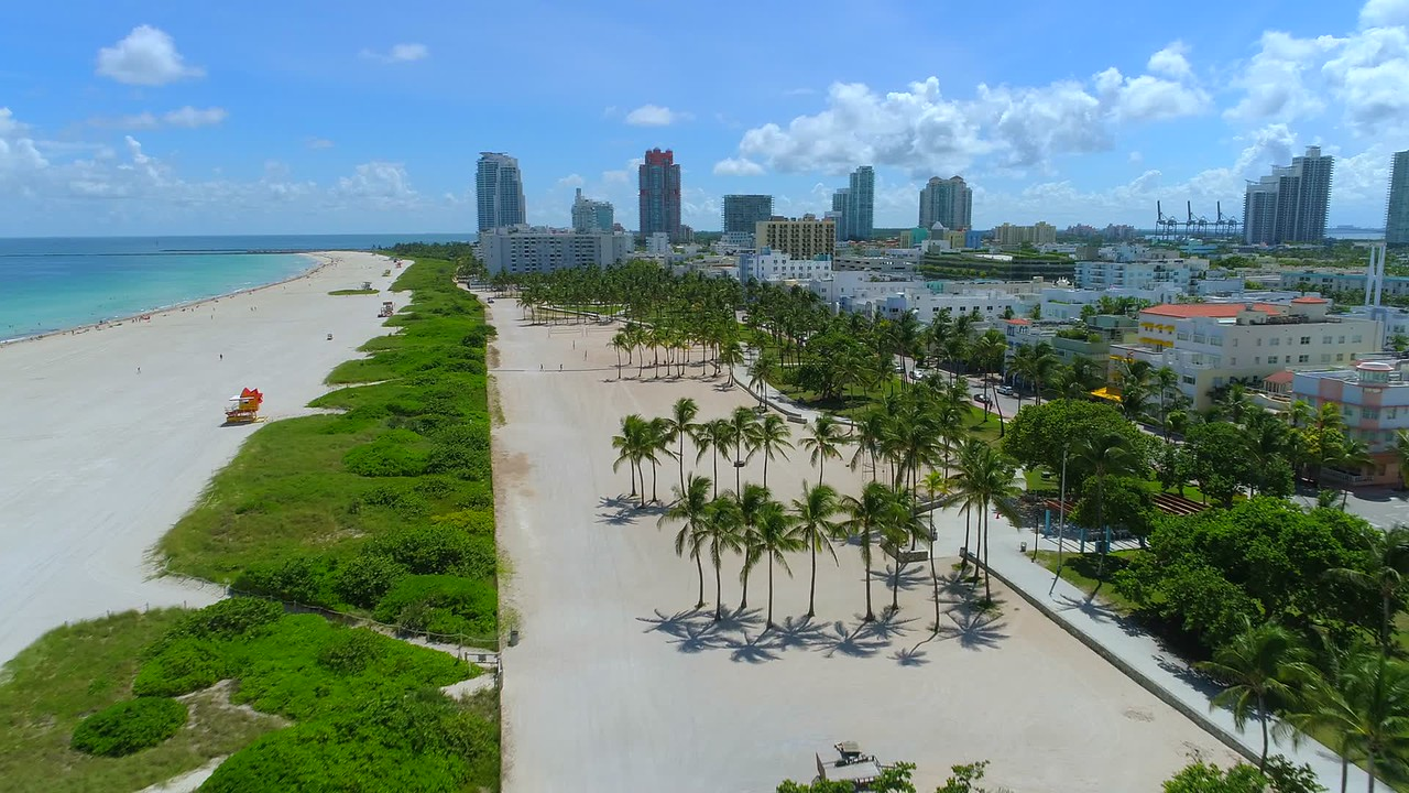 Aerial tracking shot of palm trees on Ocean Drive Lummus Park