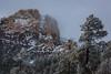AZ-2013-022: Mount Lemmon, Pima County, AZ, USA