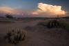 AZ-2008-040: Casa Grande, Pinal County, AZ, USA