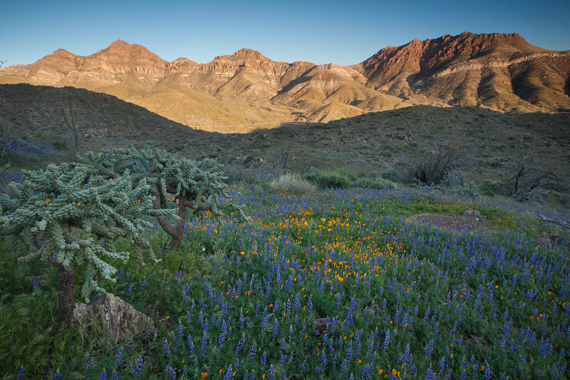 AZ-2010-087: , Pinal County, AZ, USA