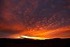 AZ-2011-004: , AZ, USA
