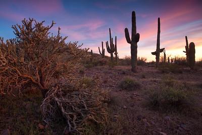 AZ-2010-063: Tohono O'Odham Indian Reservation, Pinal County, AZ, USA
