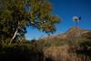 AZ-2011-104: Guadalupe Canyon, Cochise County, AZ, USA