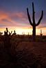 AZ-2010-062: Tohono O'Odham Indian Reservation, Pinal County, AZ, USA