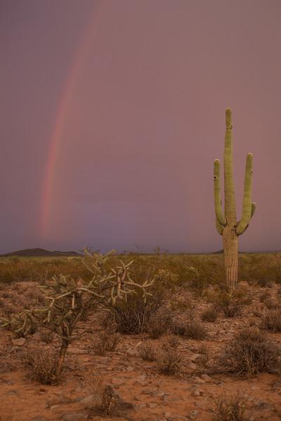 AZ-2012-030: , Pima County, AZ, USA
