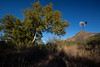 AZ-2011-103: Guadalupe Canyon, Cochise County, AZ, USA