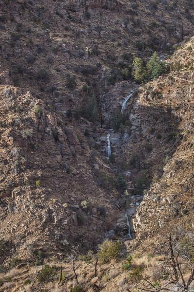 AZ-2013-014: Mount Lemmon, Pima County, AZ, USA