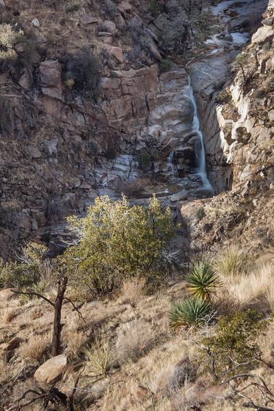 AZ-2013-016: Mount Lemmon, Pima County, AZ, USA