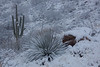 AZ-2011-016: Redington Pass, Pima County, AZ, USA