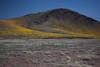AZ-2012-002: San Bernardino Valley, Cochise County, AZ, USA