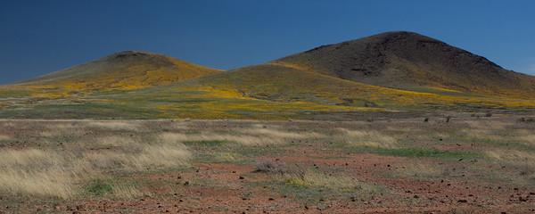 AZ-2012-004: San Bernardino Valley, Cochise County, AZ, USA