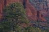 AZ-2010-017: Sedona, Coconino County, AZ, USA