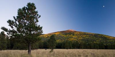 AZ-2008-059: Coconino National Forest, Coconino County, AZ, USA