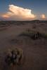 AZ-2008-039: Casa Grande, Pinal County, AZ, USA