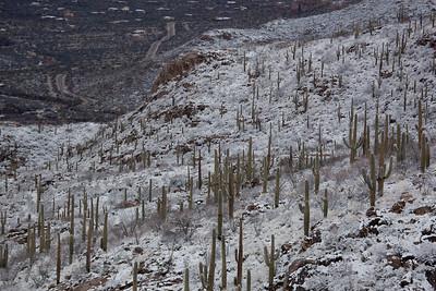 AZ-2011-032: Redington Pass, Pima County, AZ, USA
