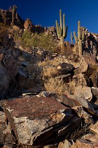 AZ-2009-060: Phoenix, Maricopa County, AZ, USA