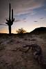 AZ-2008-048: Tohono O'Odham Indian Reservation, Pinal County, AZ, USA