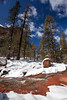 AZ-2010-022: Oak Creek Canyon, Coconino County, AZ, USA