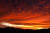 AZ-2011-008: , AZ, USA