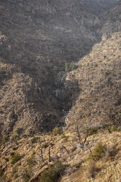 AZ-2013-012: Mount Lemmon, Pima County, AZ, USA
