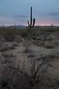 AZ-2010-005: Tucson, Pima County, AZ, USA