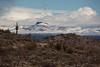 AZ-2011-054: Redington Pass, Pima County, AZ, USA