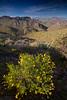 AZ-2010-042: , Yavapai County, AZ, USA