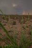 AZ-2012-022: , Pima County, AZ, USA