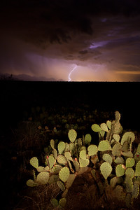 Late Monsoon Thunderstorm
