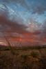 AZ-2010-125: , Cochise County, AZ, USA