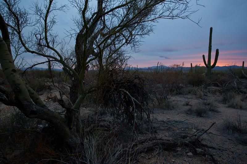 AZ-2010-007: Tucson, Pima County, AZ, USA