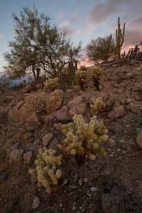 AZ-2008-060: Casa Grande, Pinal County, AZ, USA