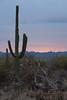AZ-2010-004: Tucson, Pima County, AZ, USA