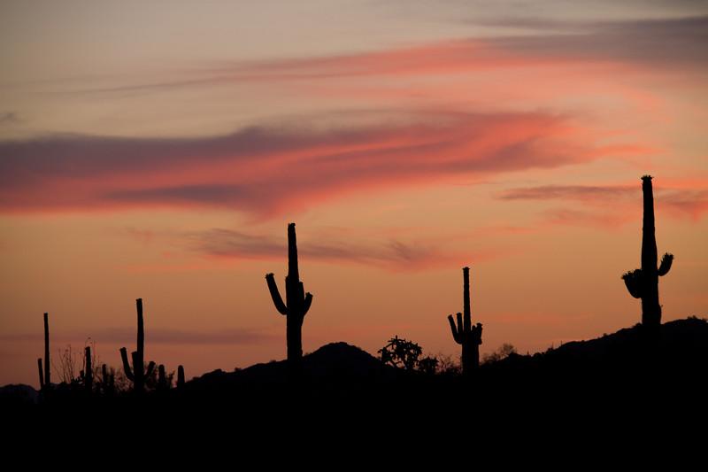 AZ-2008-034: Tohono O'Odham Indian Reservation, Pinal County, AZ, USA