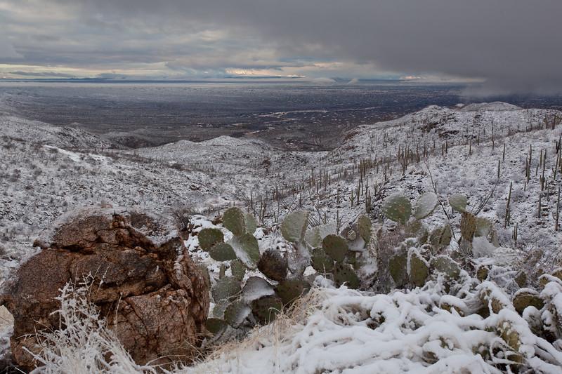 AZ-2011-021: Redington Pass, Pima County, AZ, USA