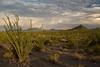 AZ-2007-048: , Pinal County, AZ, USA