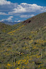 AZ-2008-008: Bartlett Lake Recreation Area, Maricopa County, AZ, USA