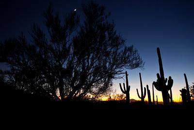 AZ-2010-142: Tucson, Pima County, AZ, USA