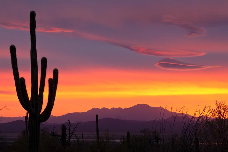 AZ-2010-014: Tucson, Pima County, AZ, USA