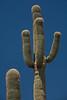 AZ-2007-046: Usery Pass, Maricopa County, AZ, USA