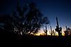 AZ-2010-141: Tucson, Pima County, AZ, USA