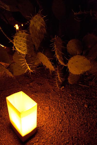 AZ-2009-082: Phoenix, Maricopa County, AZ, USA