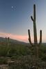 AZ-2007-022: , Pima County, AZ, USA