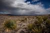 AZ-2011-058: Redington Pass, Pima County, AZ, USA