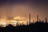 AZ-2012-038: Tucson, Pima County, AZ, USA