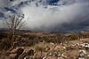 AZ-2011-060: Redington Pass, Pima County, AZ, USA