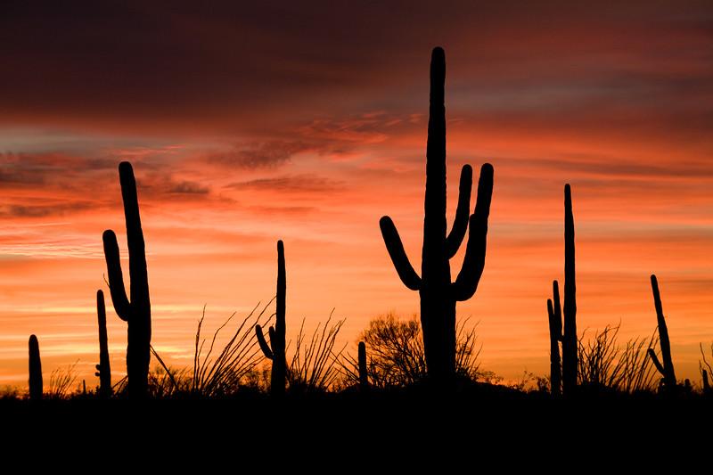 AZ-2008-020: Tucson, Pima County, AZ, USA